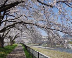 京都のいい感じのホテル(格安宿周辺)